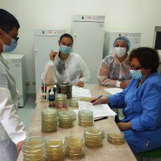 Школа лаборанта – мікробіолога, яка організована ТОВ «Лабораторія якості», м. Київ, продовжила свою роботу.